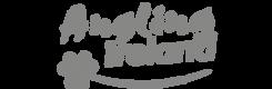 Angling Ireland Logo | The Kilbrackan Arms Hotel | Bar | Restaurant