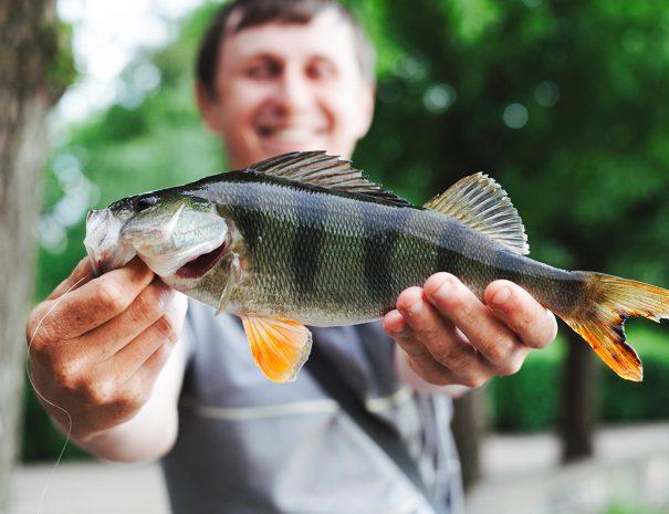Man with Fish | The Kilbrackan Arms Hotel | Bar | Restaurant